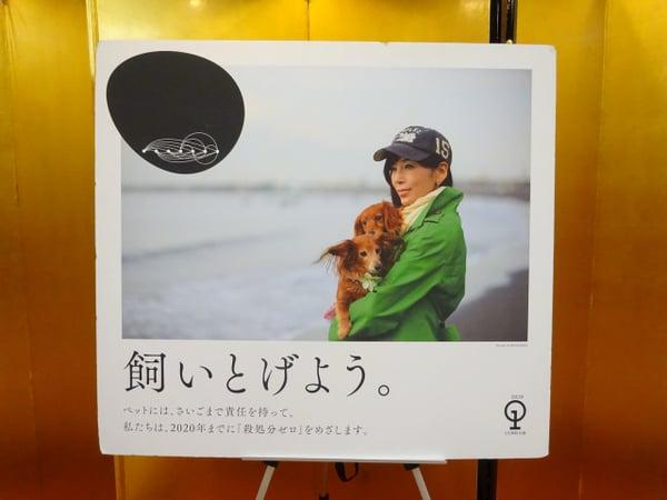 第3回「川島なお美動物愛護賞」授与式が行われました